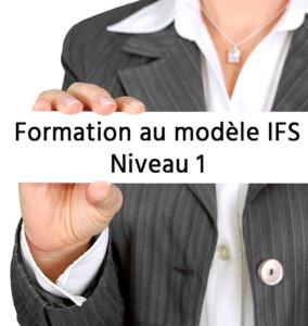Formation IFS - Niveau 1